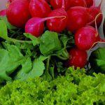 Veg-Appeal Healthy Cooking Classes in San Diego
